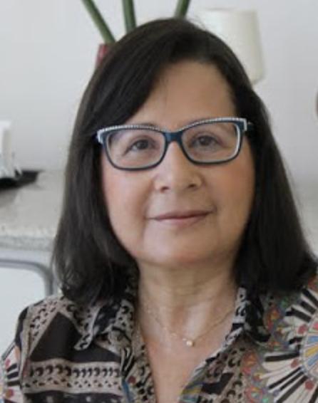 Edna Raquel Hogemann Advogada, professora permanente do programa de pós-graduação em direito da Universidade Estácio de Sá, professora adjunta e coordenadora acadêmica do curso de direito da Universidade Federal do Estado do Rio de Janeiro, coordenadora do grupo interinstitucional de pesquisa direitos humanos e transformação social